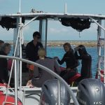 Divers prepare for in-water survey activities