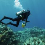 A diver heads to a survey site underwater