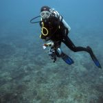 A diver carries equipment to a survey site underwater