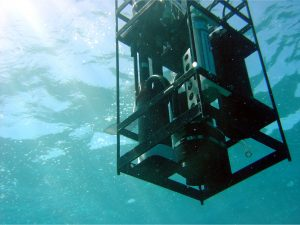 IOP cage being deployed in Hawaii