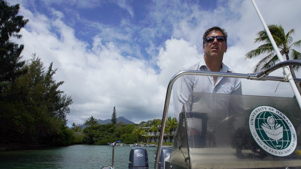 Eric Hochberg, principal investigator of the CORAL mission, steers the research boat in Kaneohe Bay. Credit: NASA/James Round