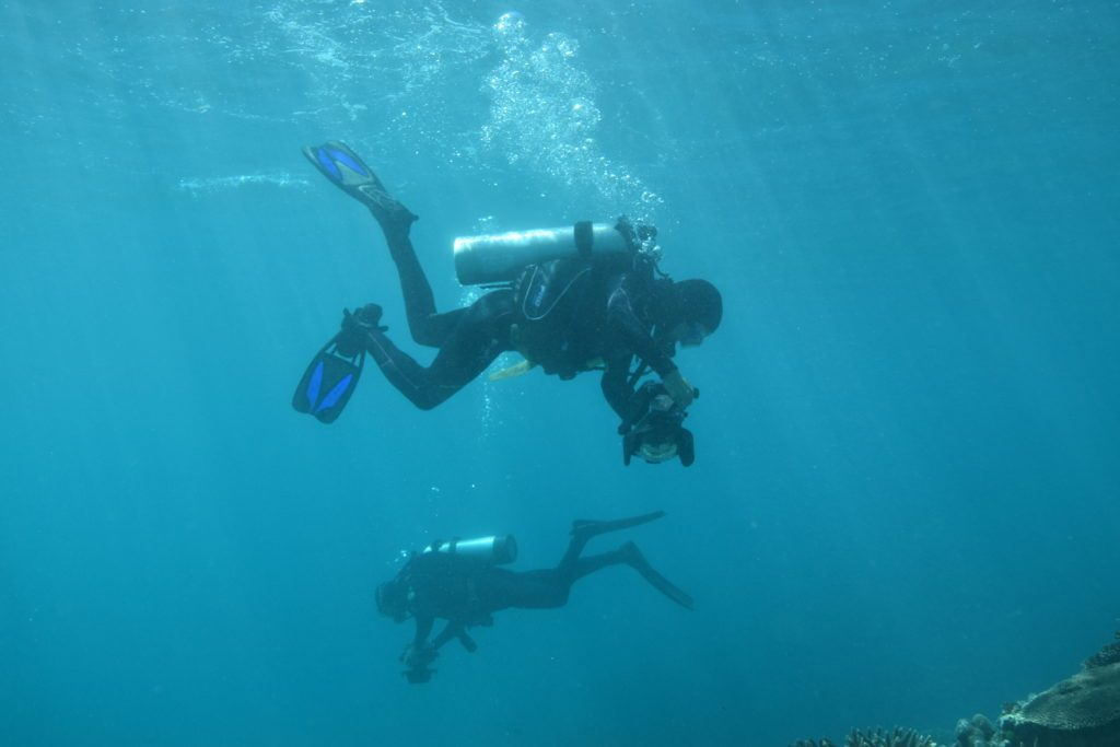 Divers conduct a benthic cover survey. Credit: Stacy Peltier